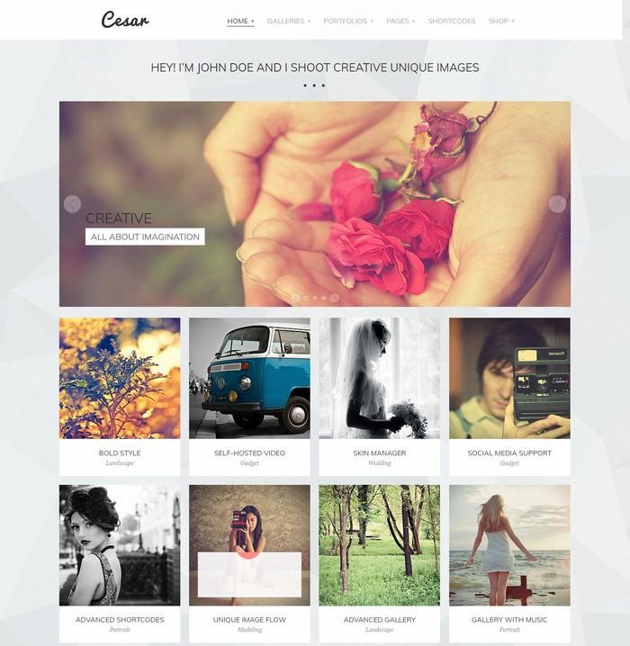 Cesar Photography