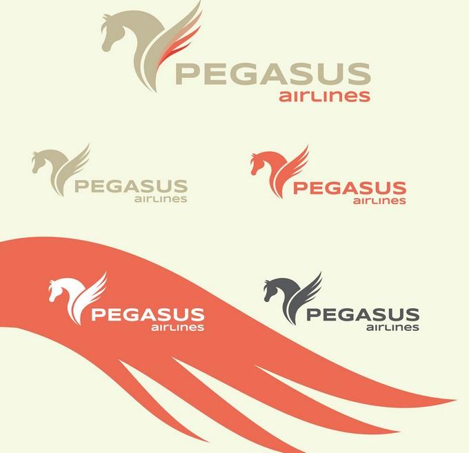 Logo & Corporate Identity Design for Airline
