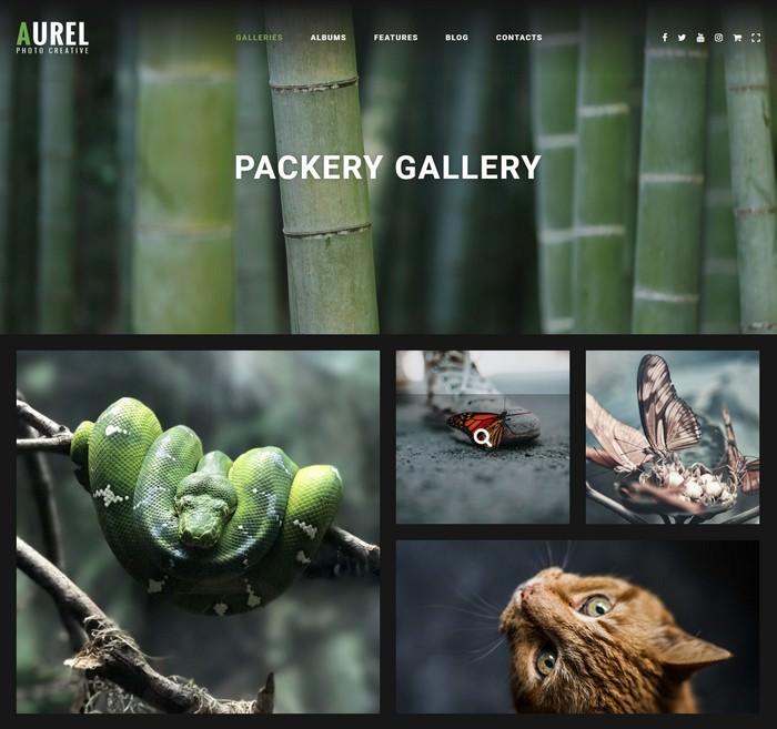 Photography Aurel