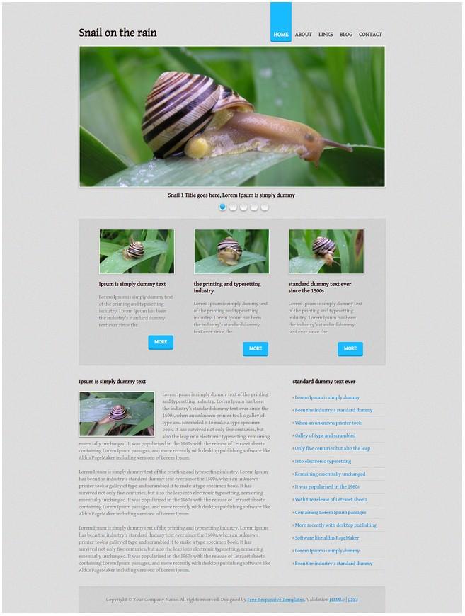 Snail on the rainDreamweaver Template