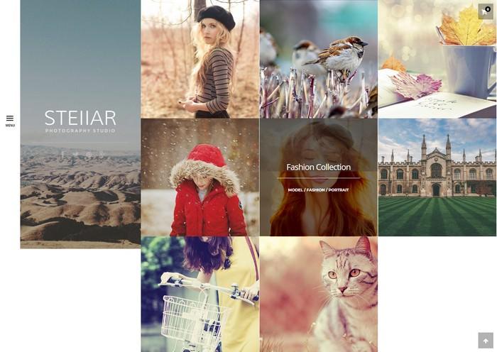 Stellar Photography WordPress