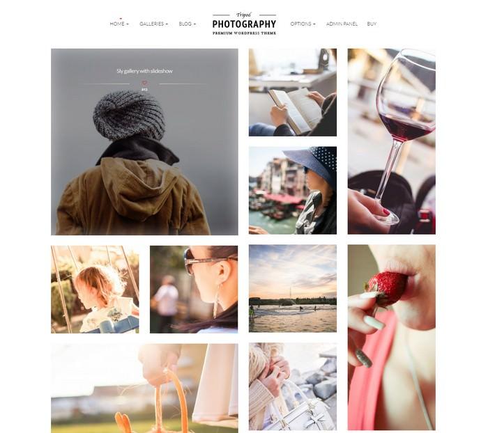 Tripod - Professional WordPress Photography Theme