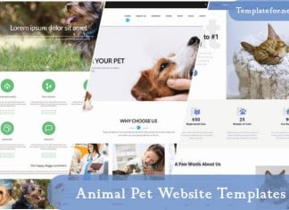 Animal Pet Website Templates