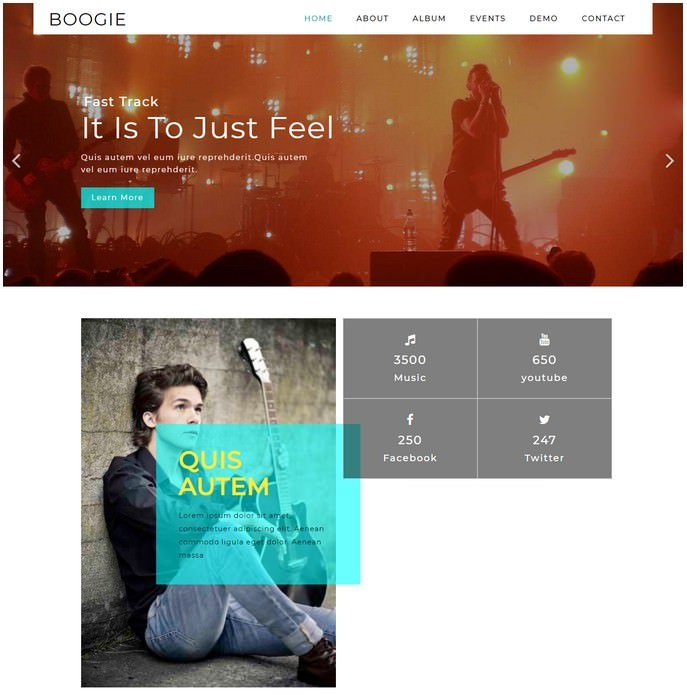 Boogie Entertainment Responsive Website Template