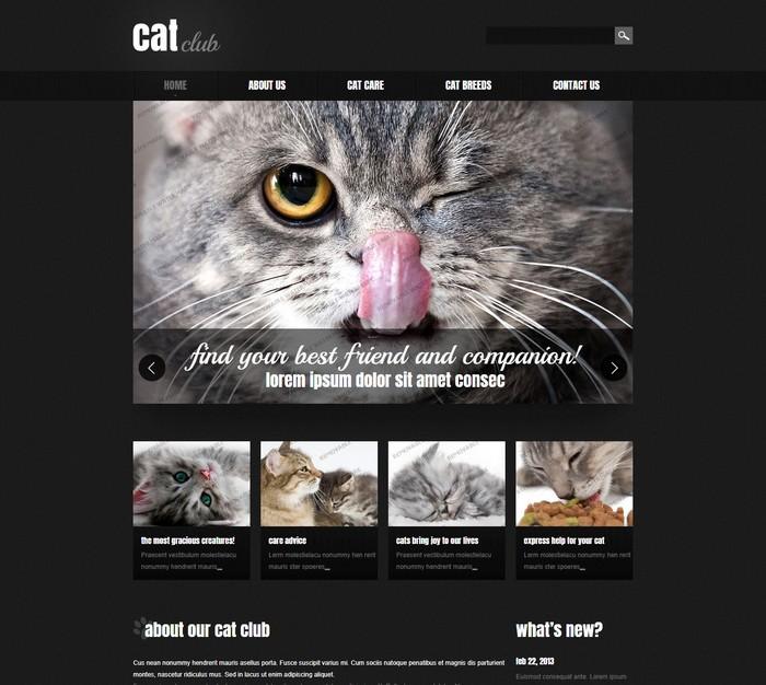 Cat Club Responsive Website Template