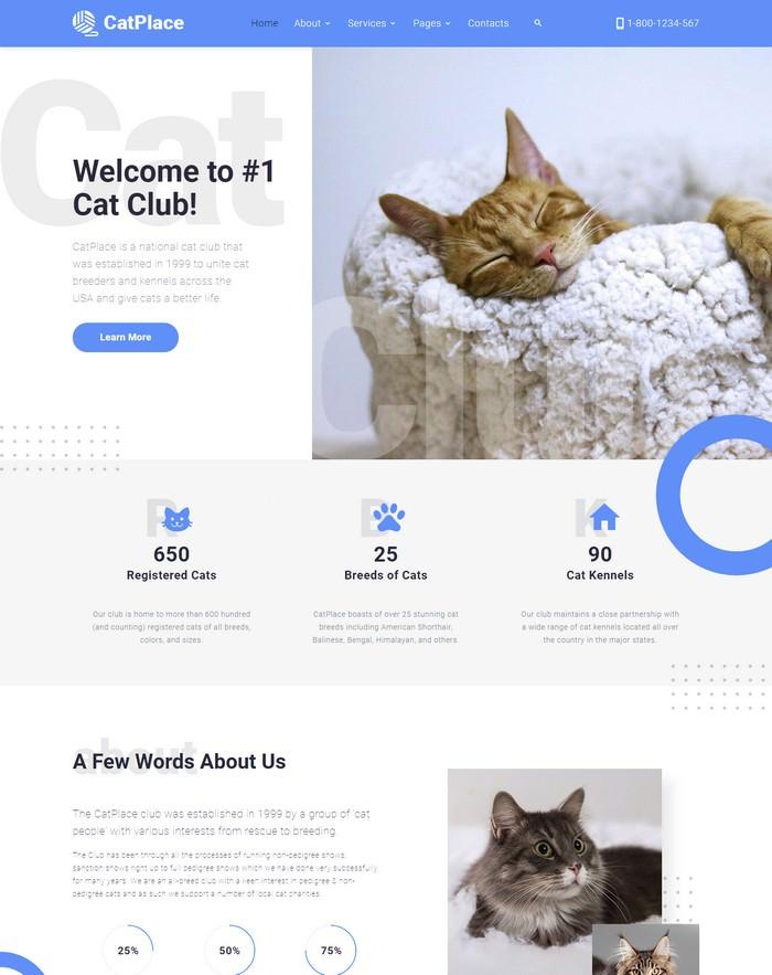 Cat Place