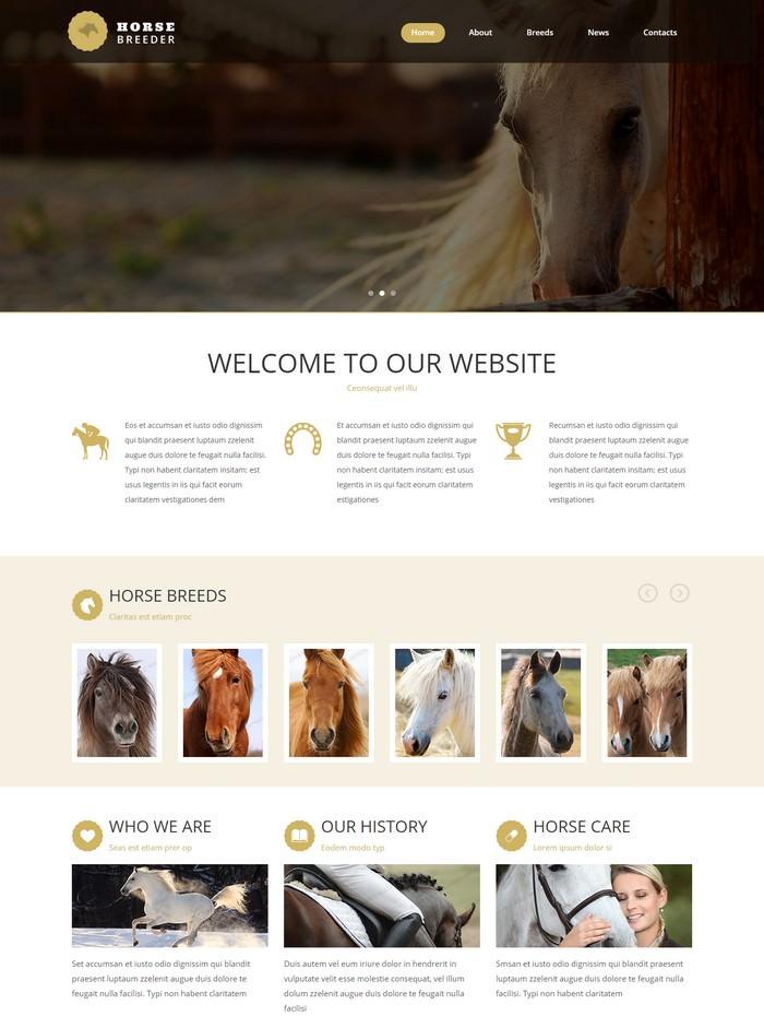 Horse Breeder Website Template