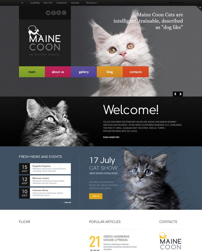 Maine Cool Cat Responsive Website Template