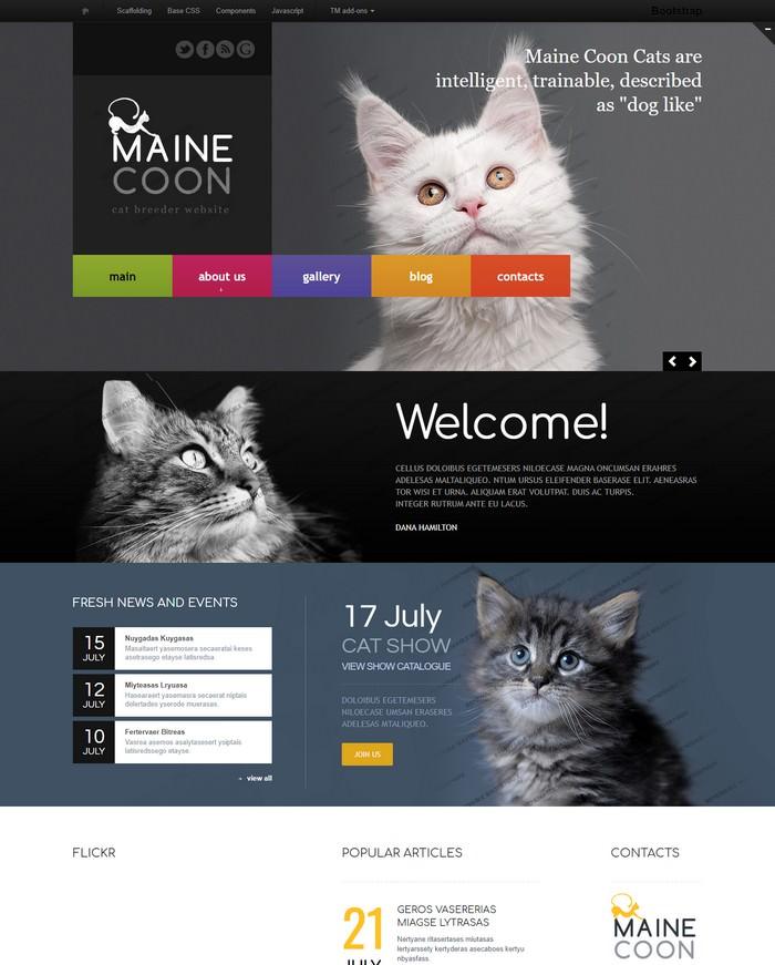 Maine Cool Cat Responsive Website Template