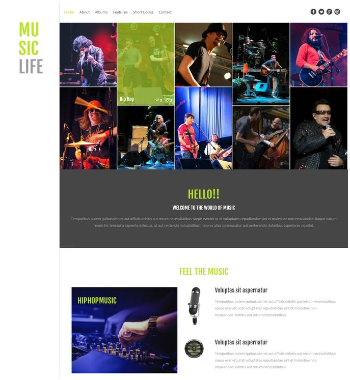 Music Life a Entertainment Responsive website template