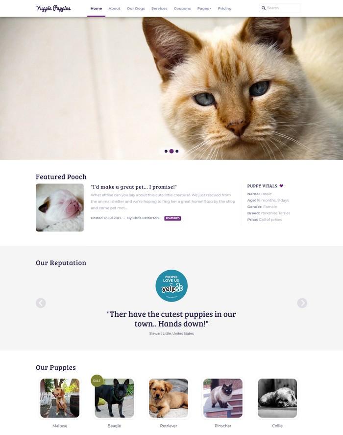 Petshop – Responsive Pet Friendly Theme