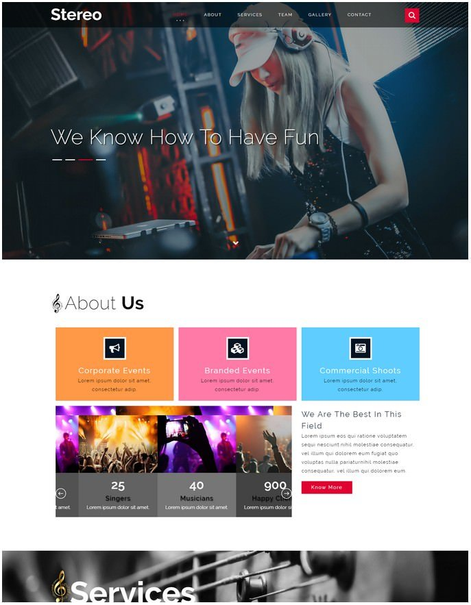 Stereo Entertainment Responsive Website Template