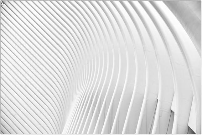 Curve Design Futuristic Lines