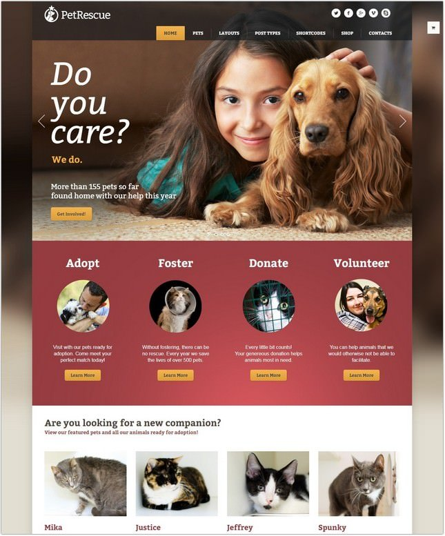 Pet Rescue - Animals and Shelter Charity PHP Theme