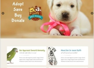 Pet World - Pet Sitter and Pet Shop, Animal Care PHP Theme