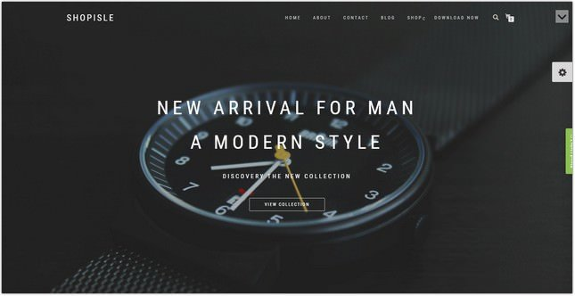 Shopisle WordPress Ecommerce Theme