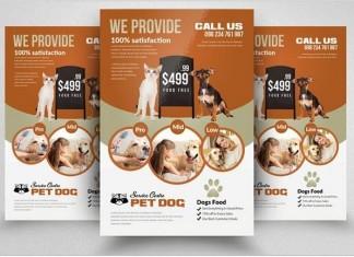 Adopt Pet Animals