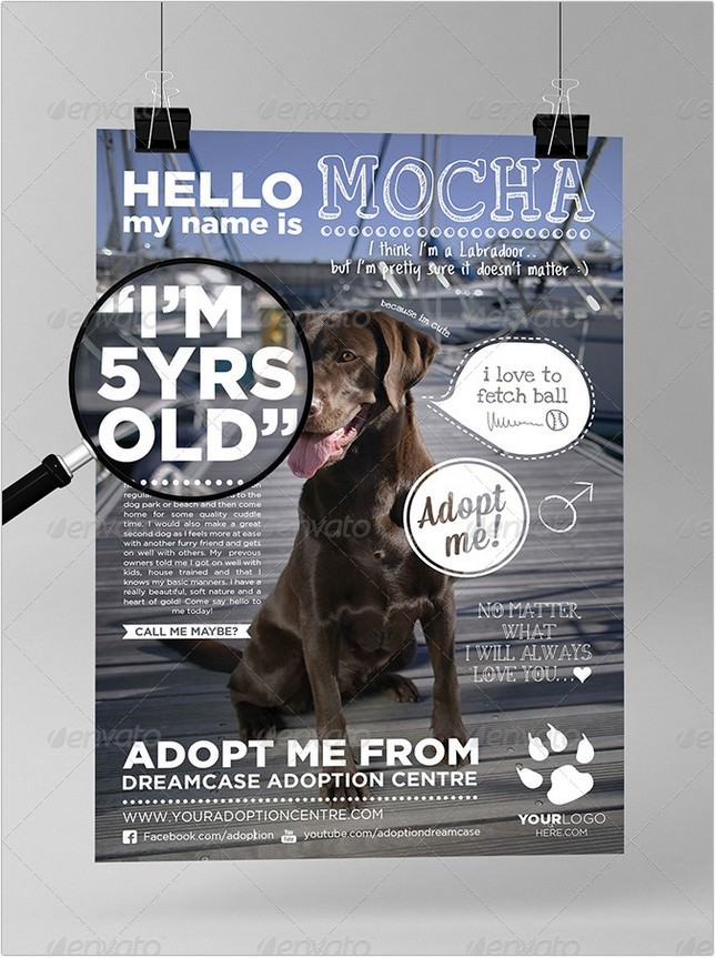 Animals Adopt Me Marketing Template