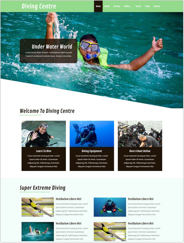 Diving Bootstrap Responsive Web Template