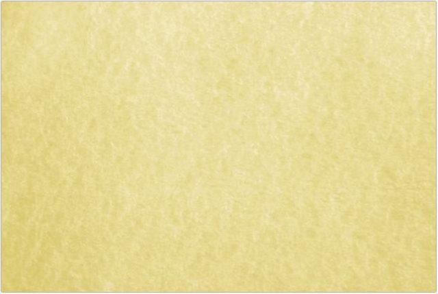 Golden Parchment Paper Texture