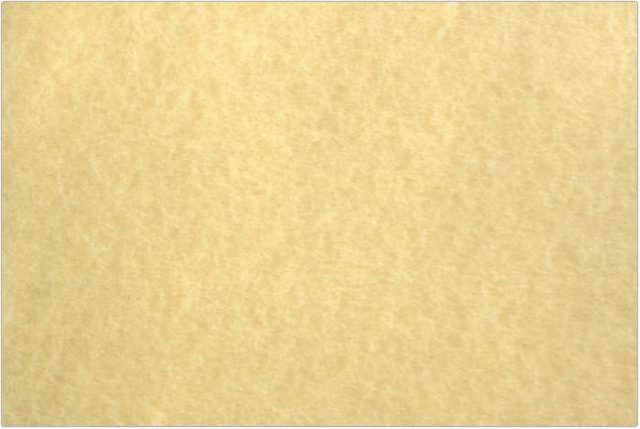 Light Colored Parchment Paper Texture