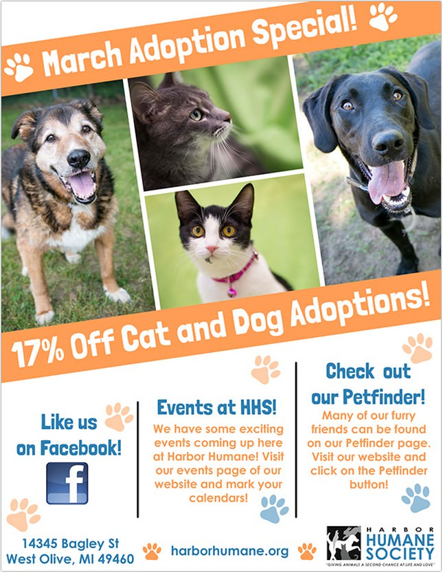 March Adoption Special Flyer