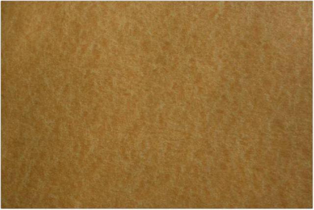 Parchment Paper Texture # 2