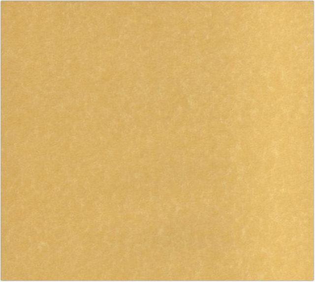 Parchment Texture 1