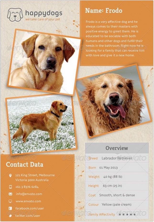 Pets Adoption Marketing Template