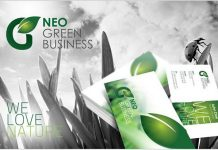 RW Green Business Corporate