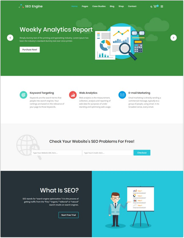 SEOEngine – SEO, Digital Marketing Agency HTML Template