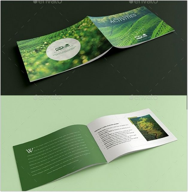 Tours Travels and Resort Activity Brochure