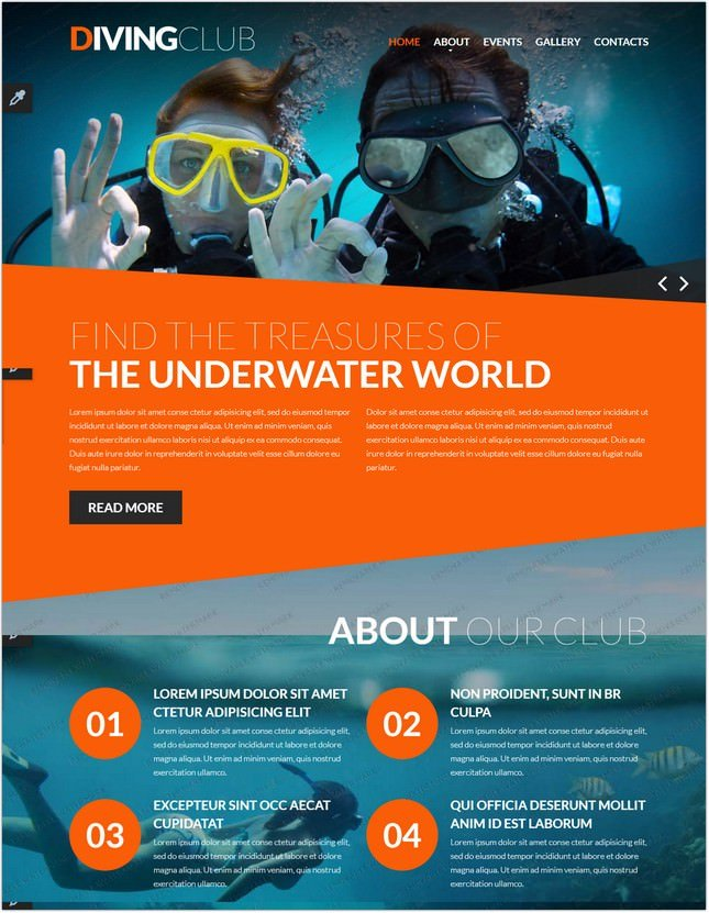 Website Template Diving Responsive