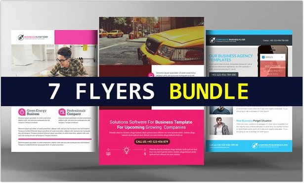 Business Analyst Flyers Bundle