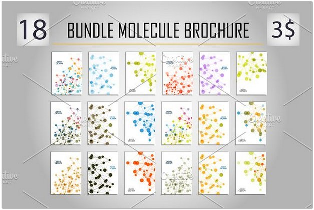 Bundle Molecule Brochure