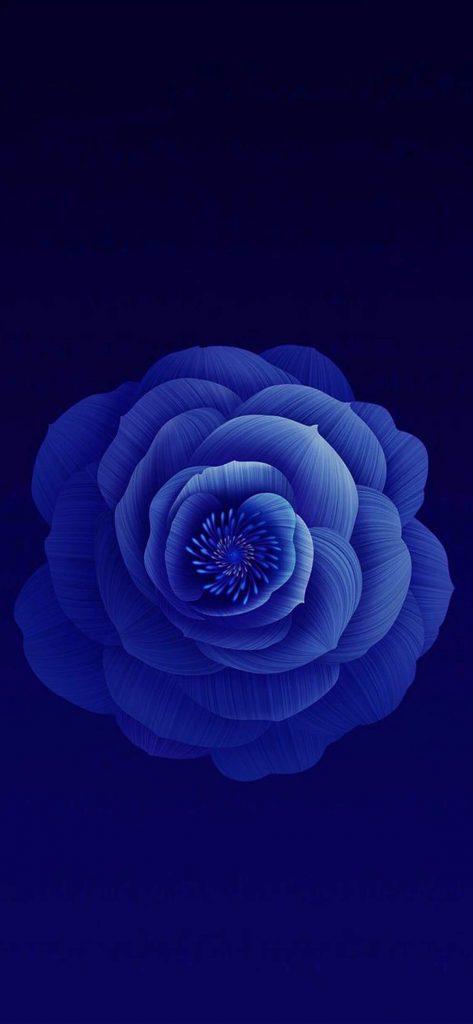 1125 × 2436 iPhone X Dark Blue Flower wallpaper