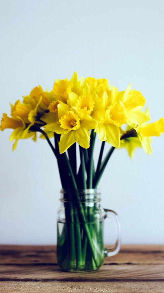 1080 × 1920 ellow flower Plant iPhone Wallpaper
