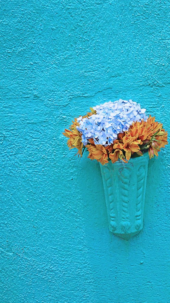 1080 × 1920 Flower pot on wall iPhonel