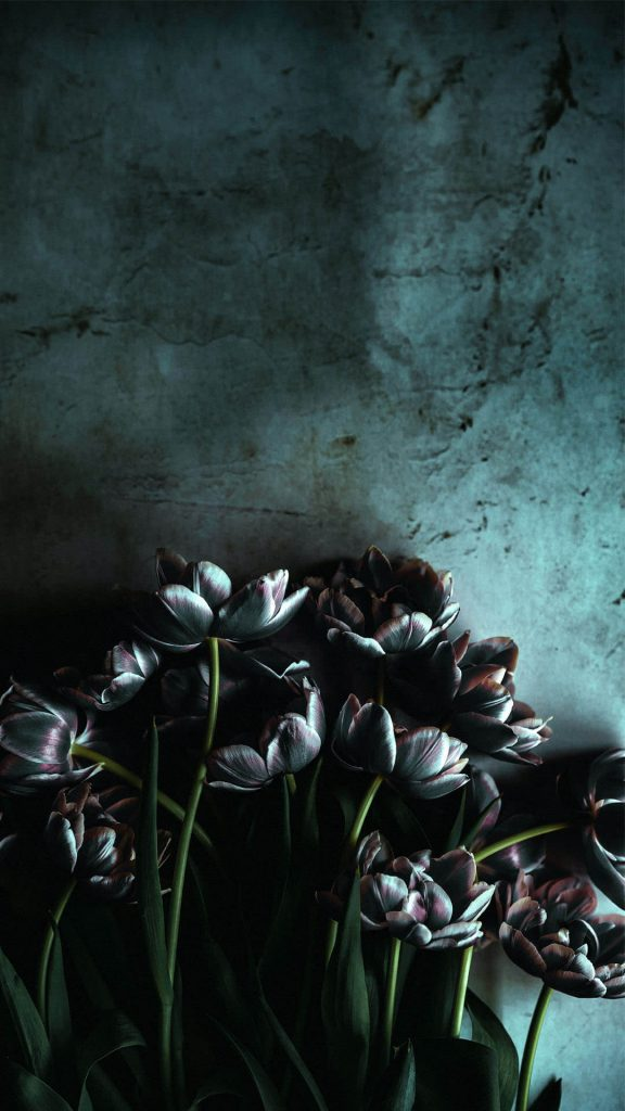 1080 × 1920 HD flower iPhone Wallpaper