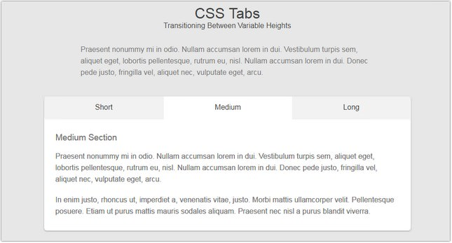 30+ Best CSS Tabs To Style Your Website - Templatefor