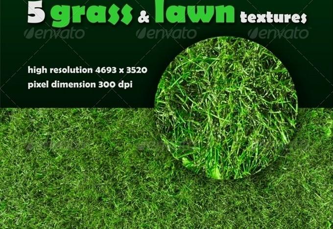 5 Grass & Lawn Textures