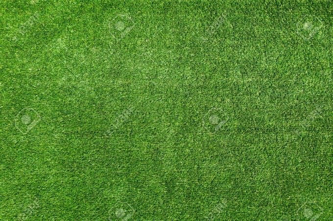 Lawn Grass Background Texture