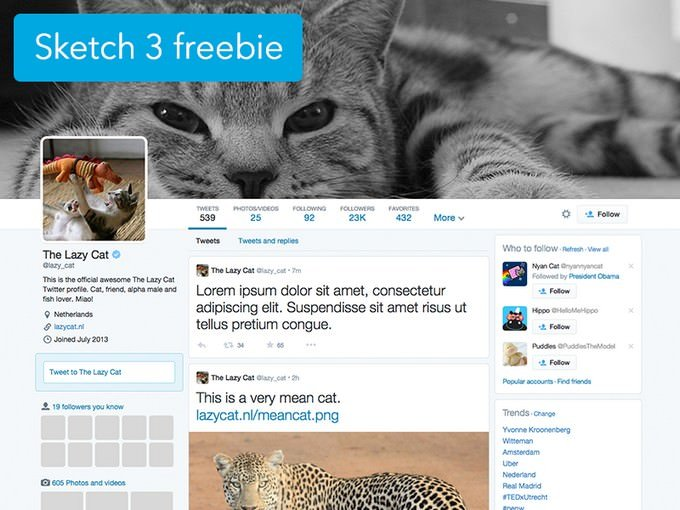 Twitter Social Media Profile Sketch 3 template