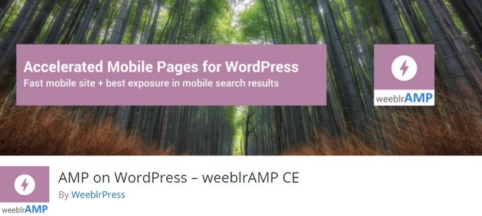 AMP on WordPres
