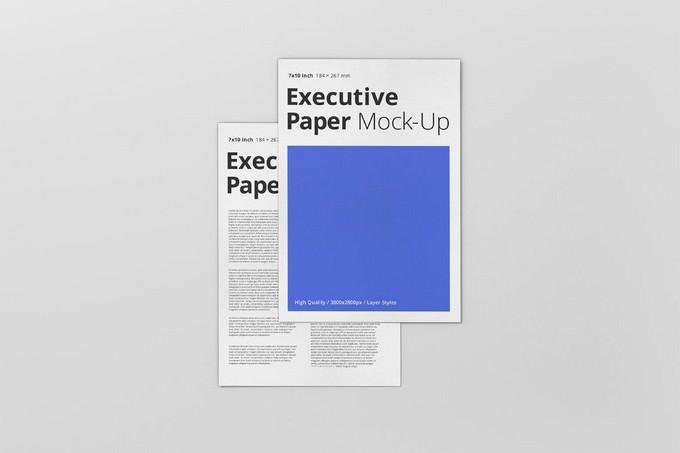 Executive Paper Mockup - 7x10