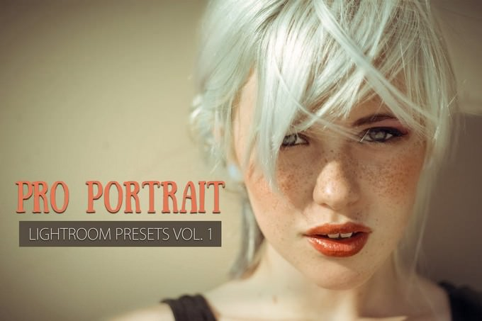 10 Portrait Lightroom Presets Ver. 1