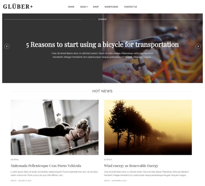 Gluber - Multi Purpose Personal & News Theme