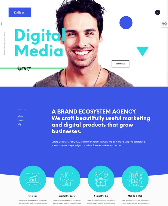 Kallyas -  eCommerce Digital Media Agency WordPress Theme