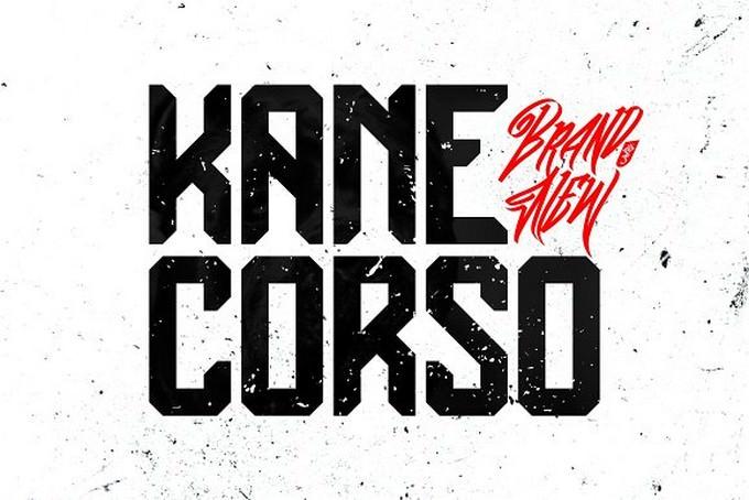 Kane Corso