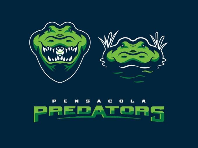 Predators Alt Look